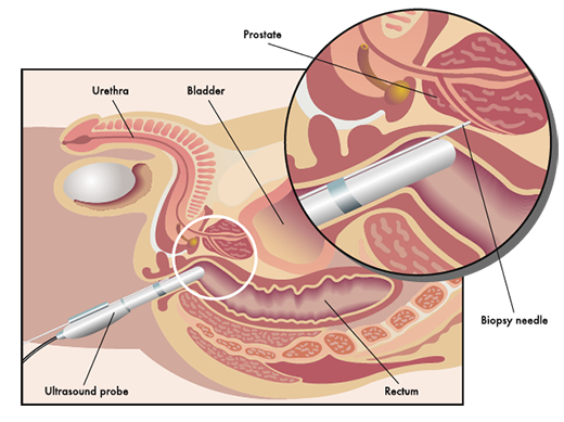 Methods Image